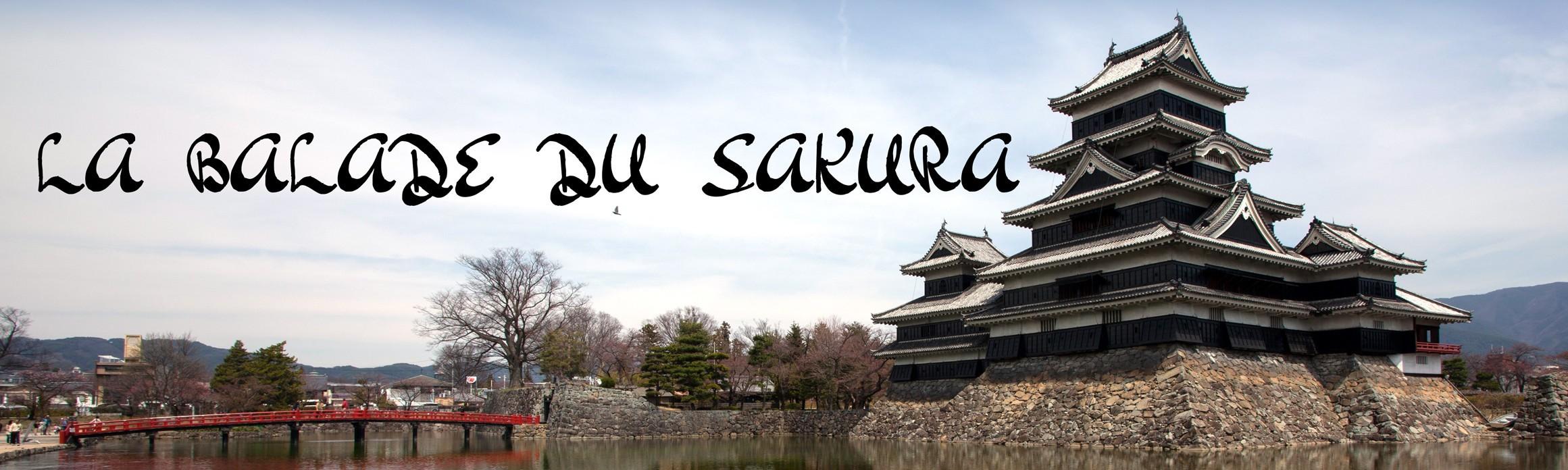 La balade du Sakura au Japon, sur les sentiers des châteaux japonais