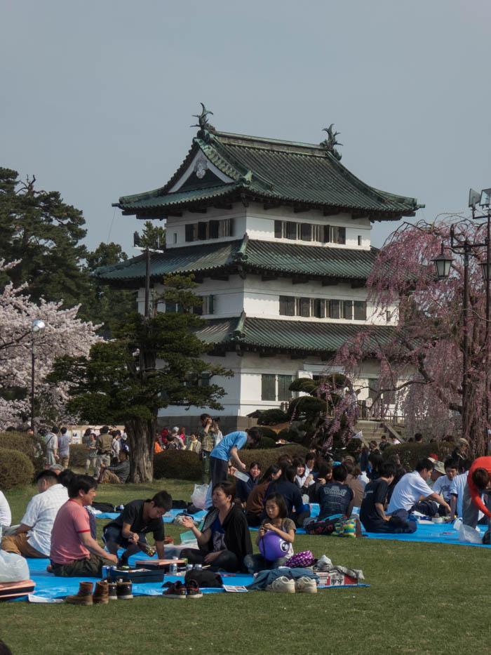 Sakura_article_hirosaki1_27042014_P1040637