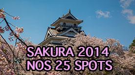 Sakura 2014, nos 25 spots à la loupe