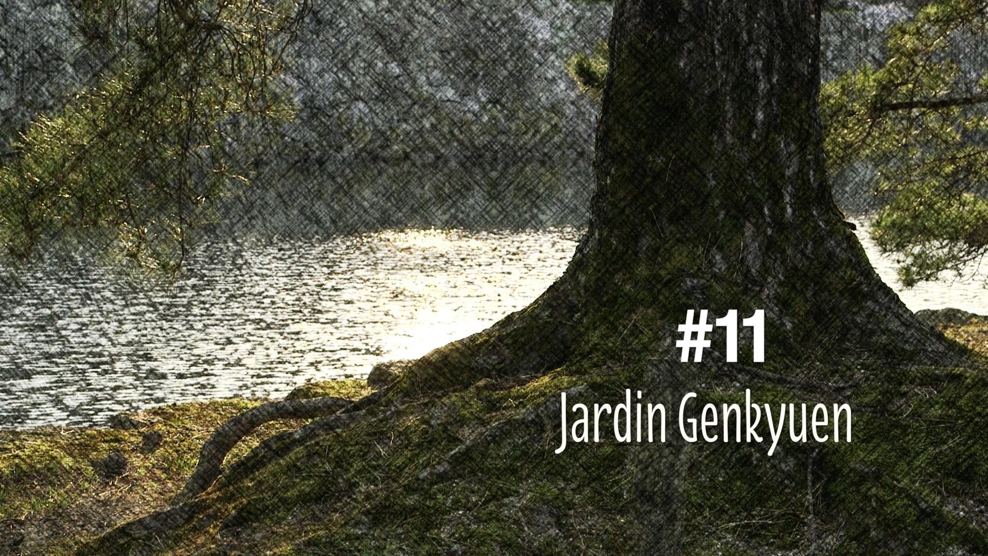 Le jardin Genkyuen à Hikone au Japon (#11)