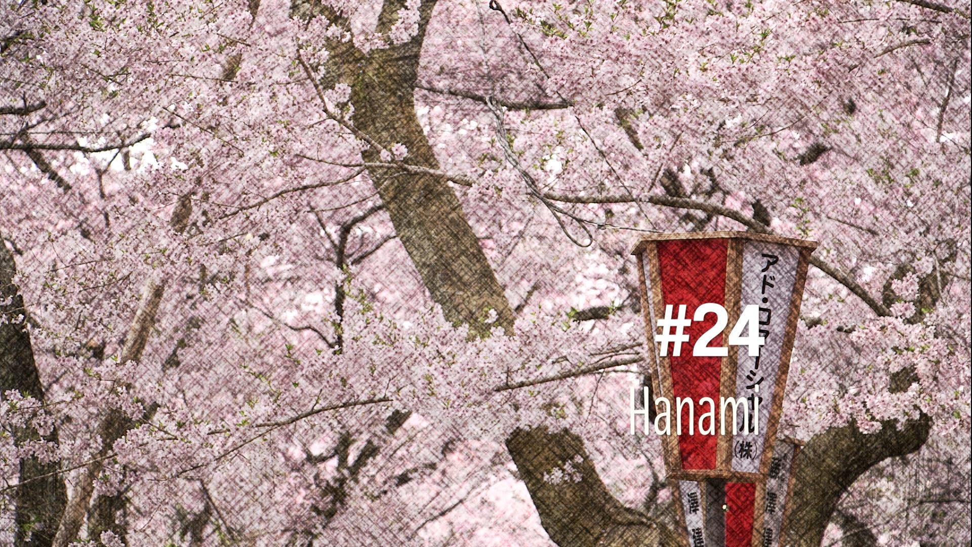 Hanami : admirer les fleurs de cerisiers au Japon (#24)