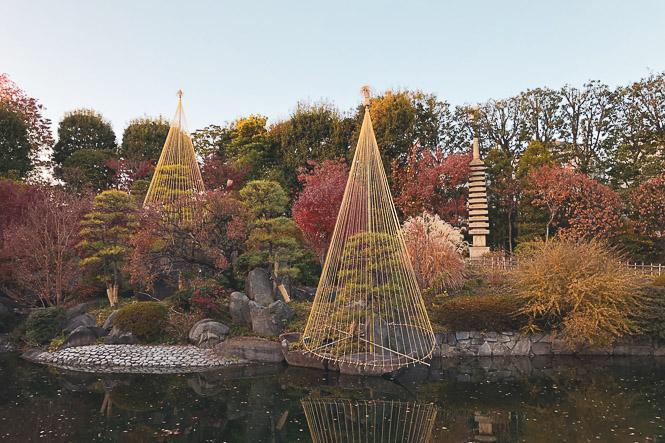 Promenade dans un jardin tokyoïte