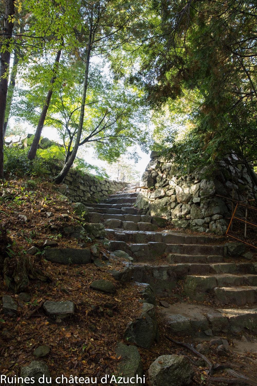 ruines_azuchi-bds-japon-11
