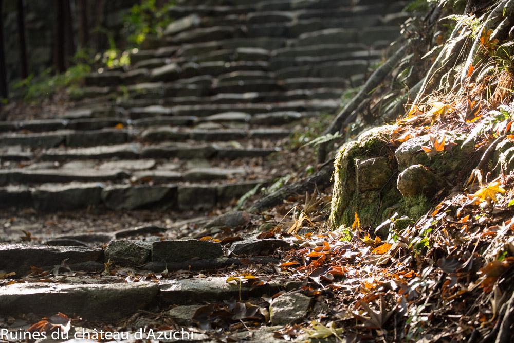 ruines_azuchi-bds-japon-13