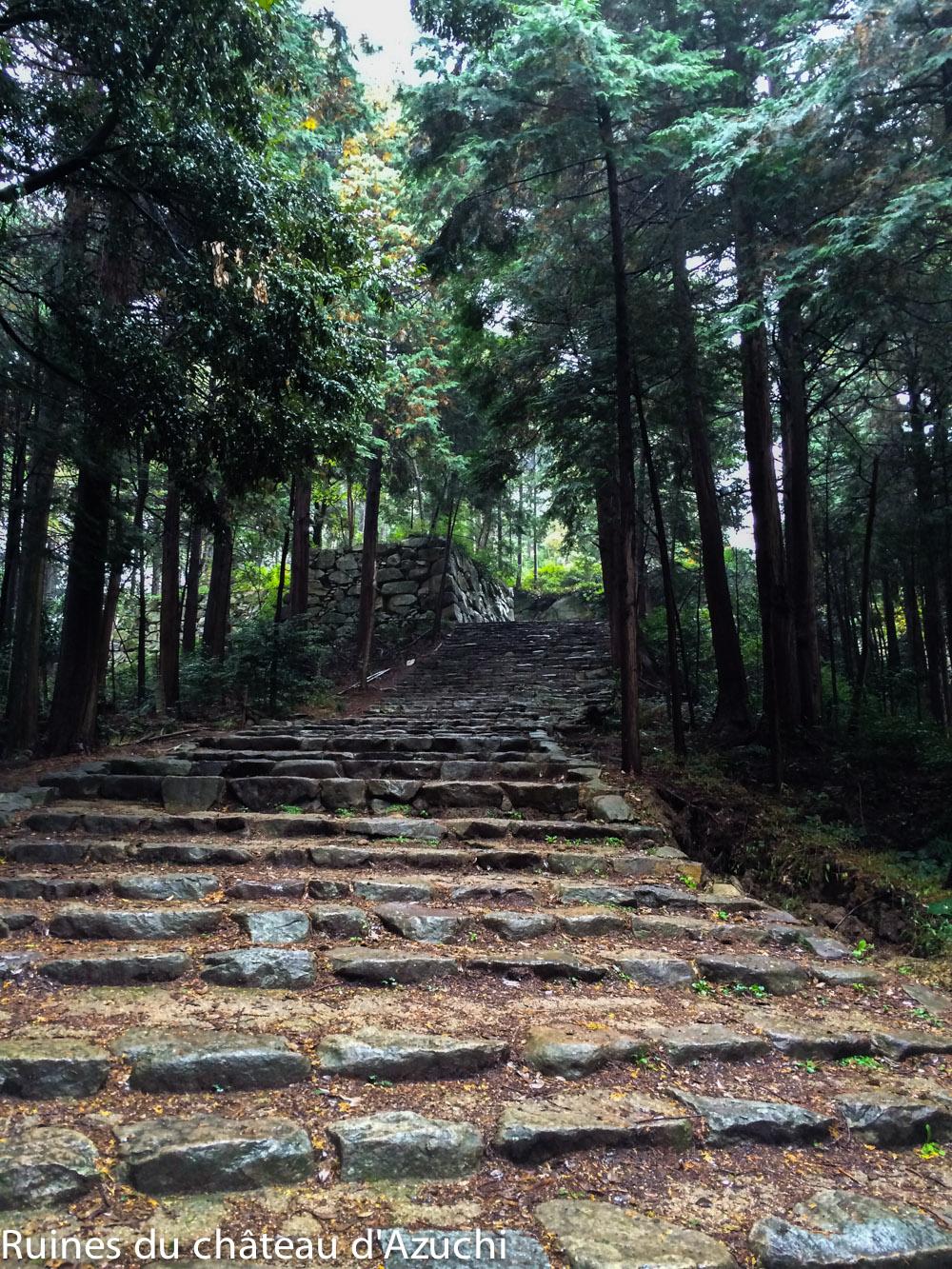 ruines_azuchi-bds-japon-17