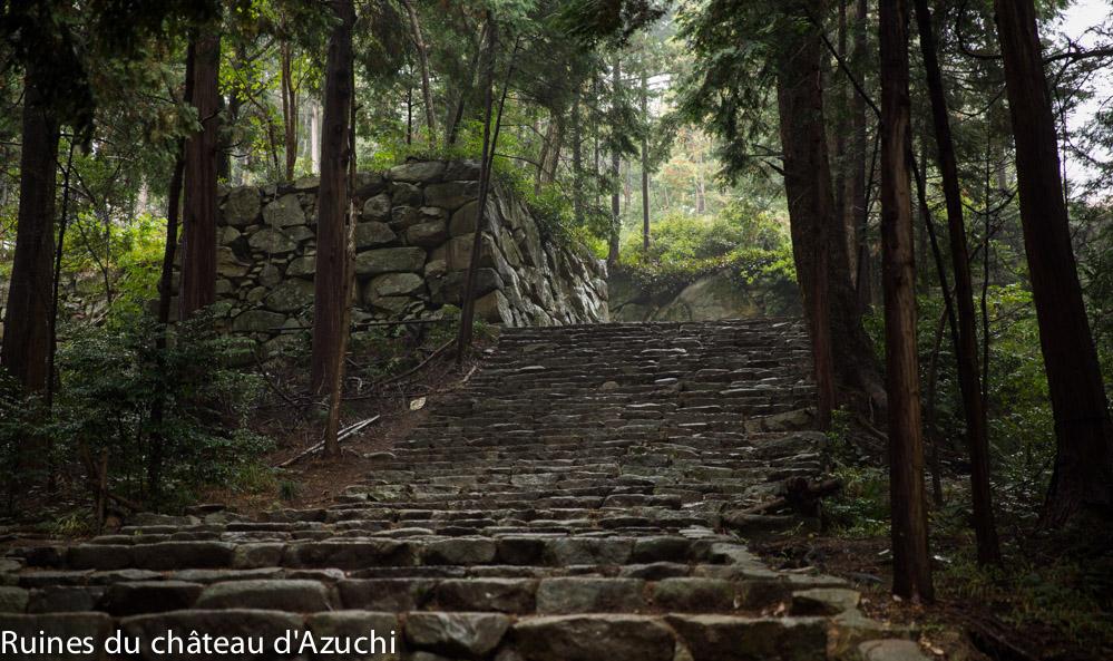 ruines_azuchi-bds-japon-4