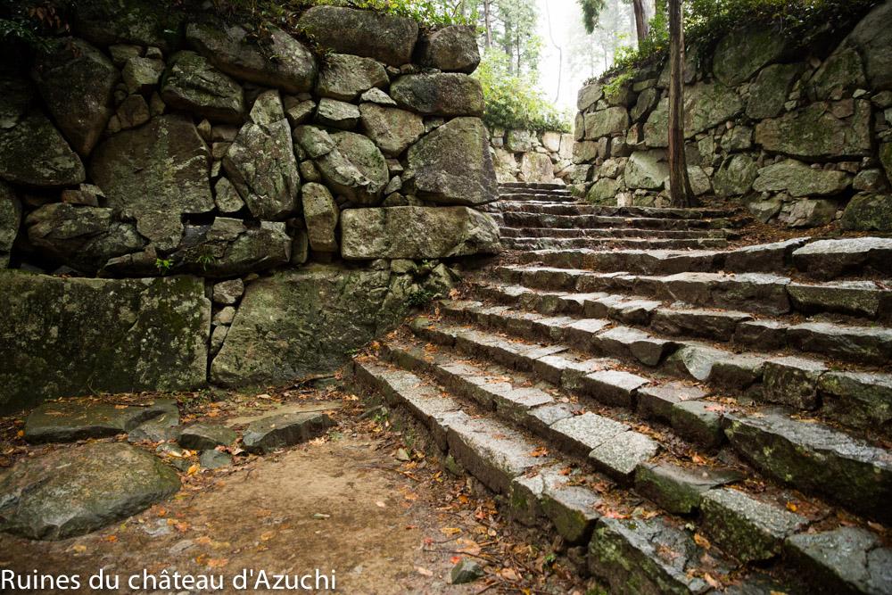 ruines_azuchi-bds-japon-5