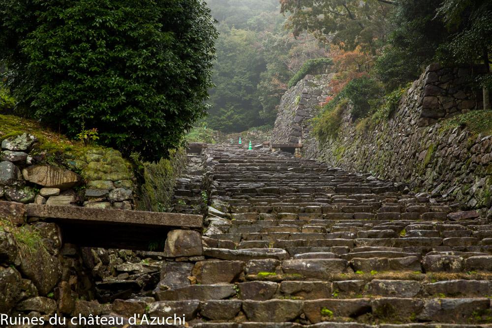ruines_azuchi-bds-japon