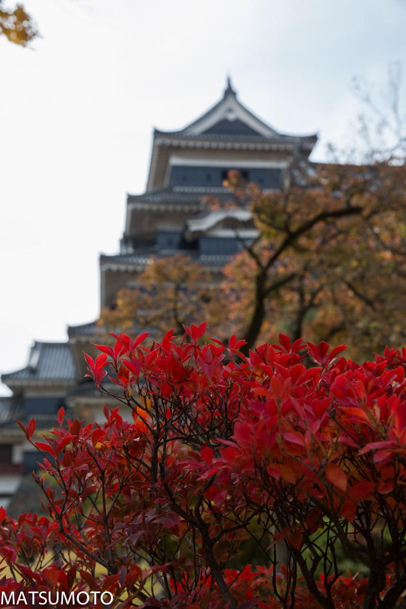 chateau_japon-matsumoto-8