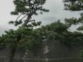 edo_castle_tokyo-11