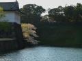 edo_castle_tokyo-16