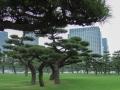 edo_castle_tokyo-4