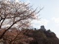 inuyama-16