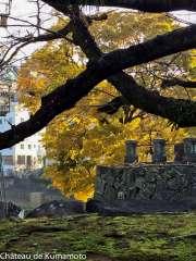 chateau_kumamoto_japon-kumamoto-26