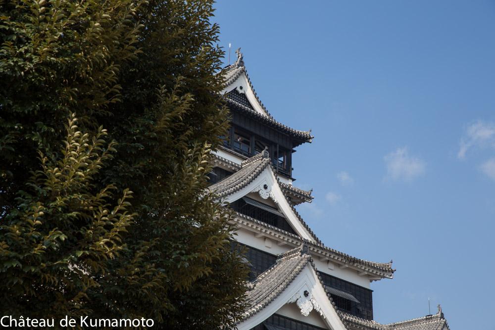 chateau_kumamoto_japon-kumamoto-17