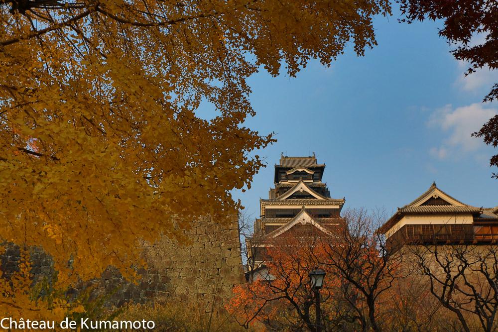 chateau_kumamoto_japon-kumamoto-29