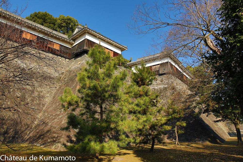 chateau_kumamoto_japon-kumamoto-31
