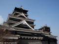 chateau_kumamoto_japon-kumamoto-18