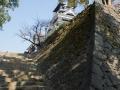 chateau_kumamoto_japon-kumamoto-19