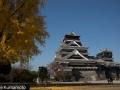 chateau_kumamoto_japon-kumamoto-34