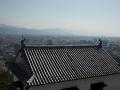 sakura_matsuyama_01042014-7v0b3432