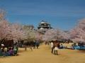 sakura_matsuyama_article_web_matsuyama01042014-7v0b2298