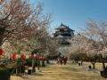 sakura_matsuyama_article_web_matsuyama01042014-7v0b3516