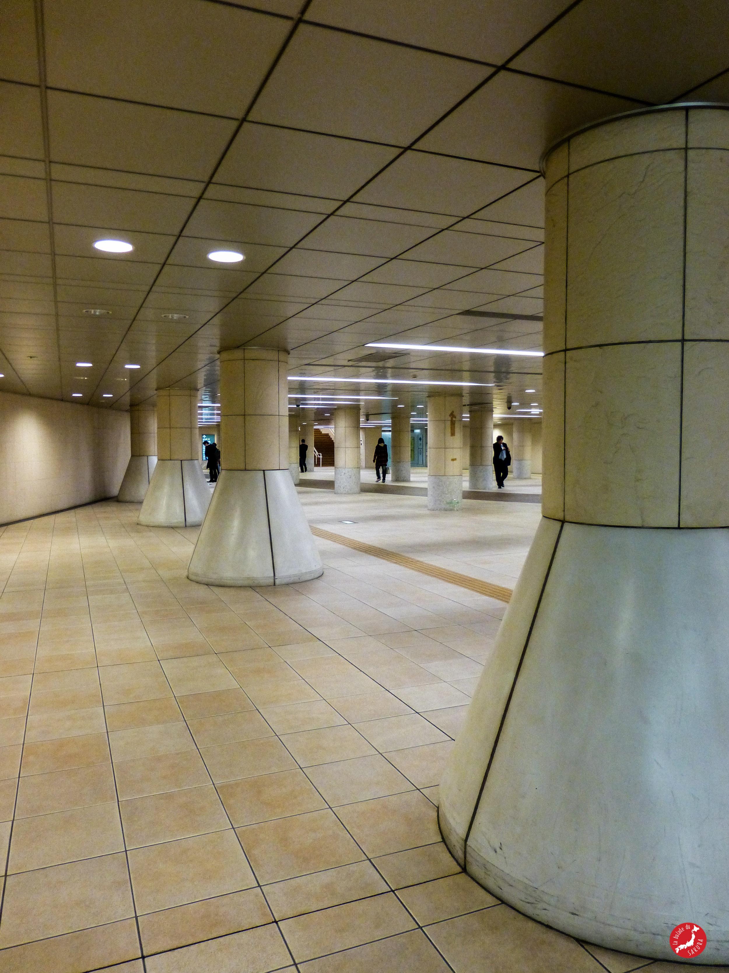 bds__metro_de_tokyo1
