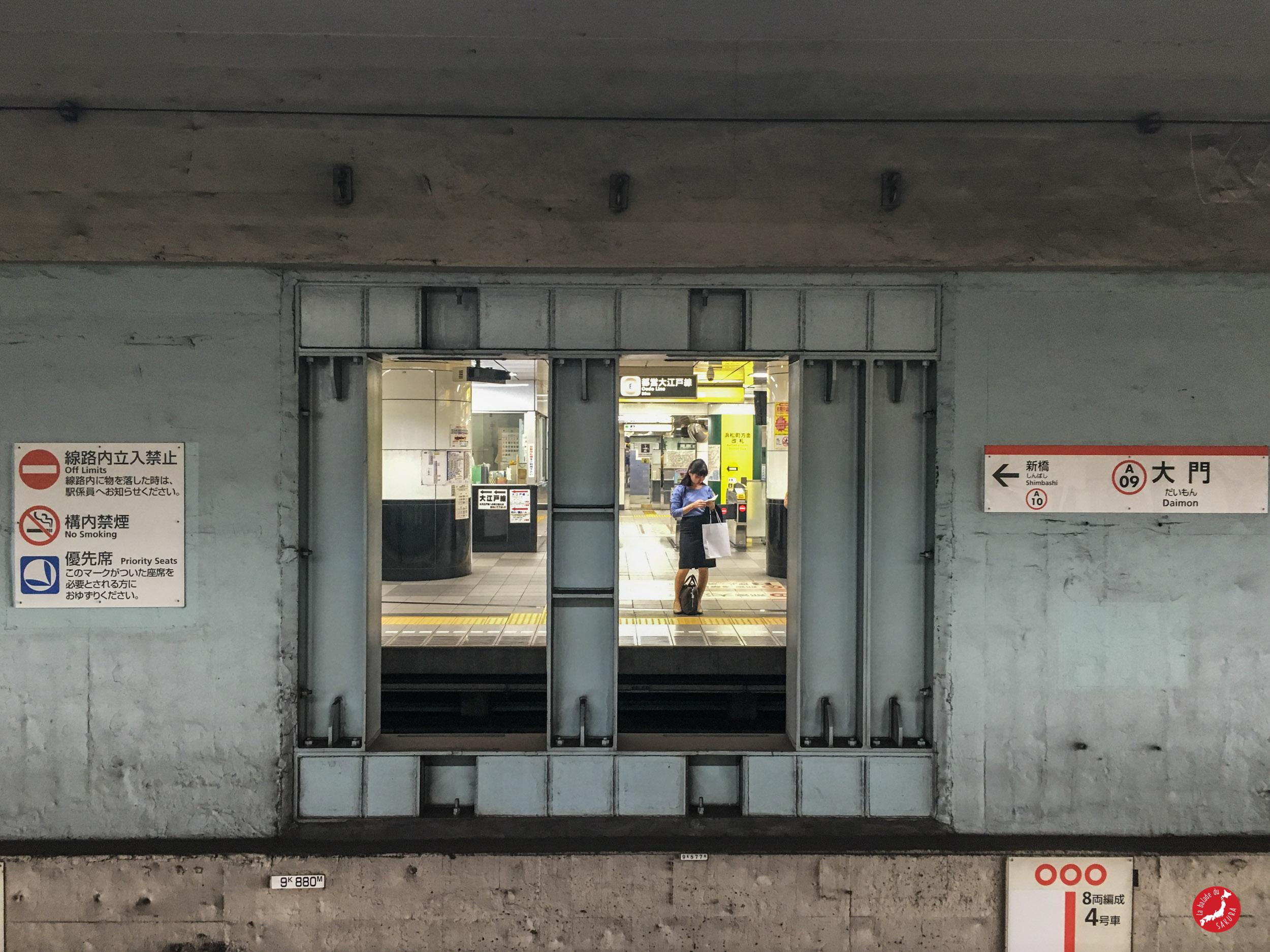 japaninamug__metro_tokyo__subway14