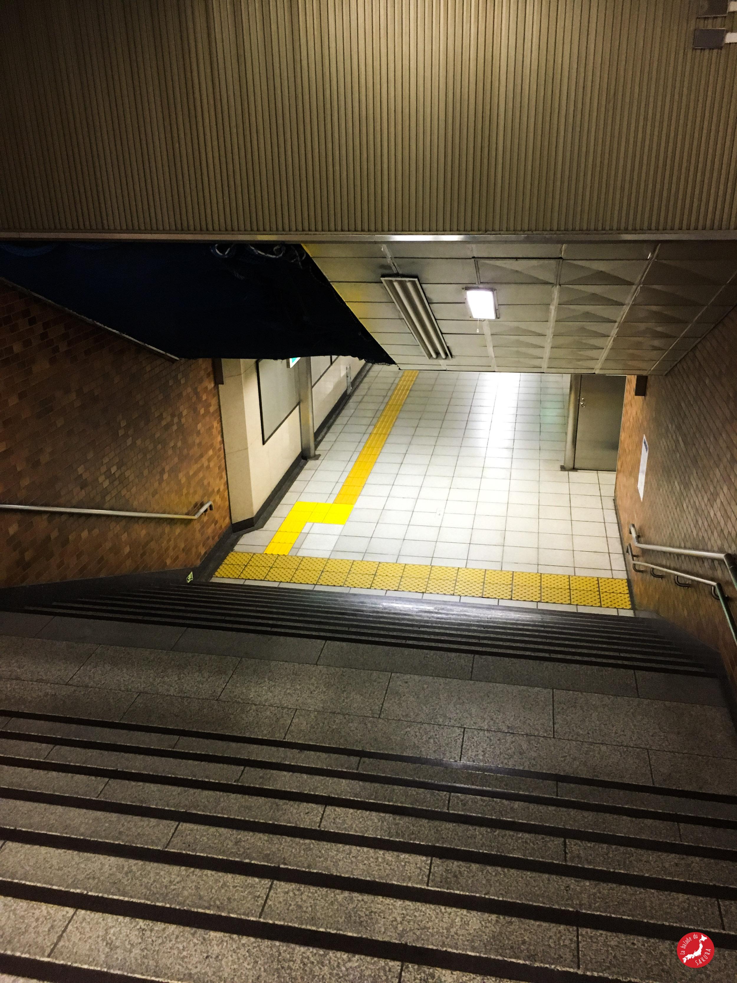 japaninamug__metro_tokyo__tokyo_subway15