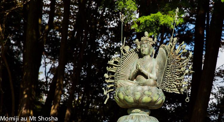 article14_japon-momiji-mt-shosha-2