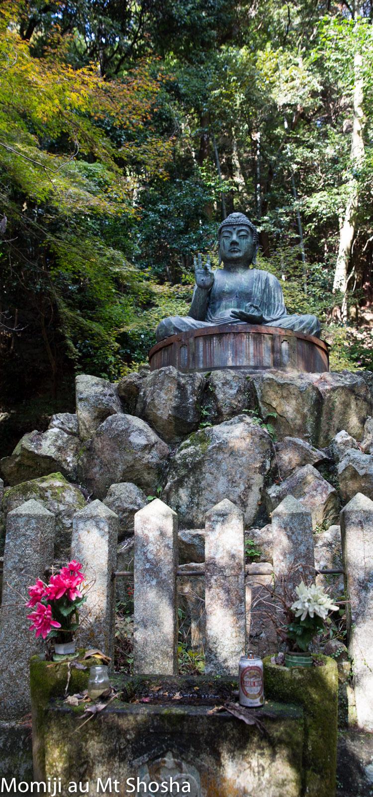 article14_japon-momiji-mt-shosha-23