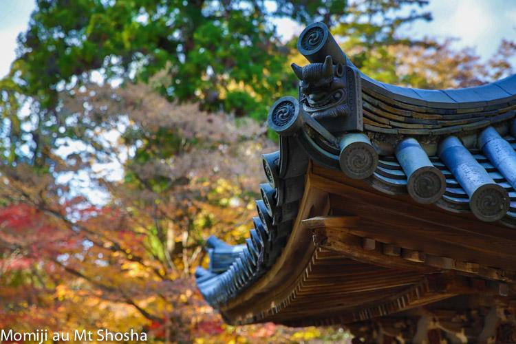article14_japon-momiji-mt-shosha-27