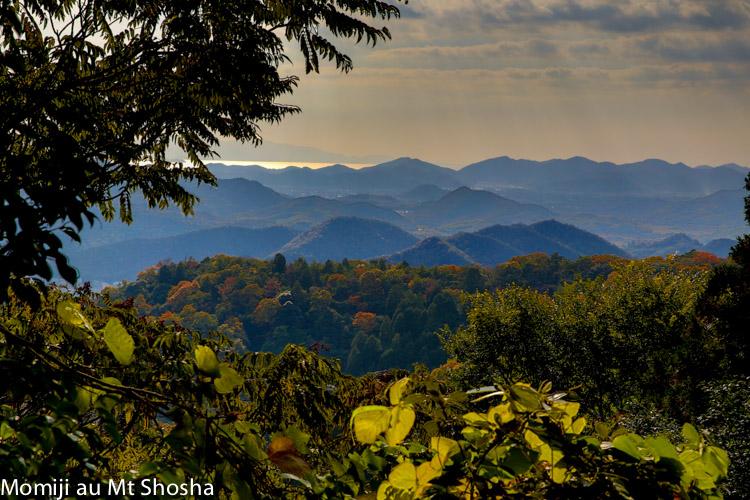 article14_japon-momiji-mt-shosha-28