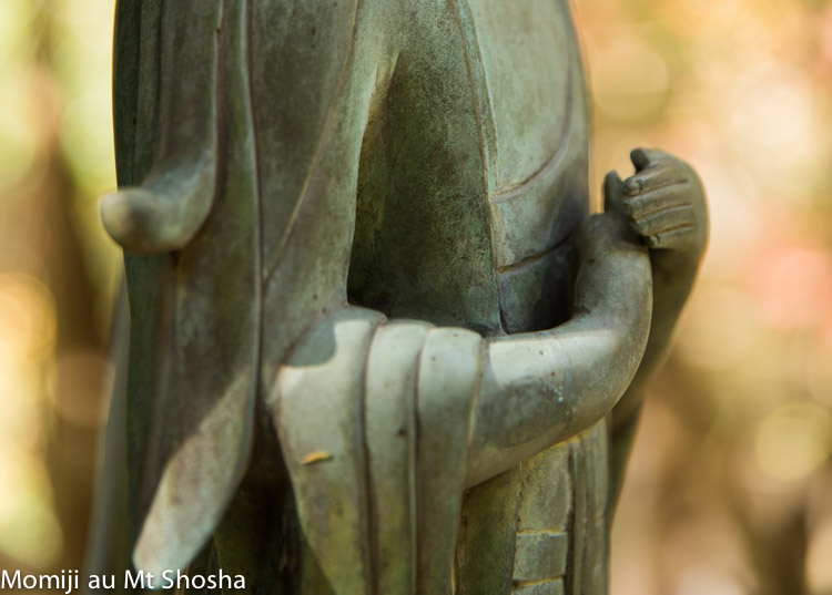 article14_japon-momiji-mt-shosha-3