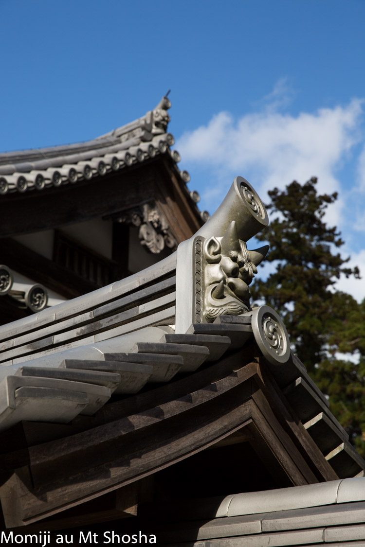 article14_japon-momiji-mt-shosha-8