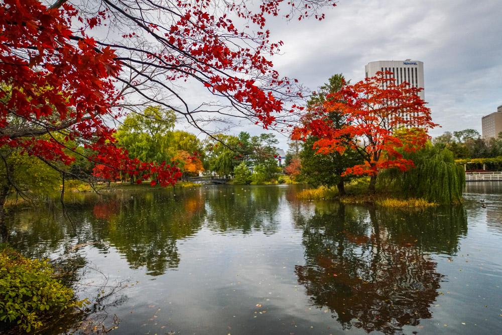 bds-nakajima-park-sapporoDSC02577