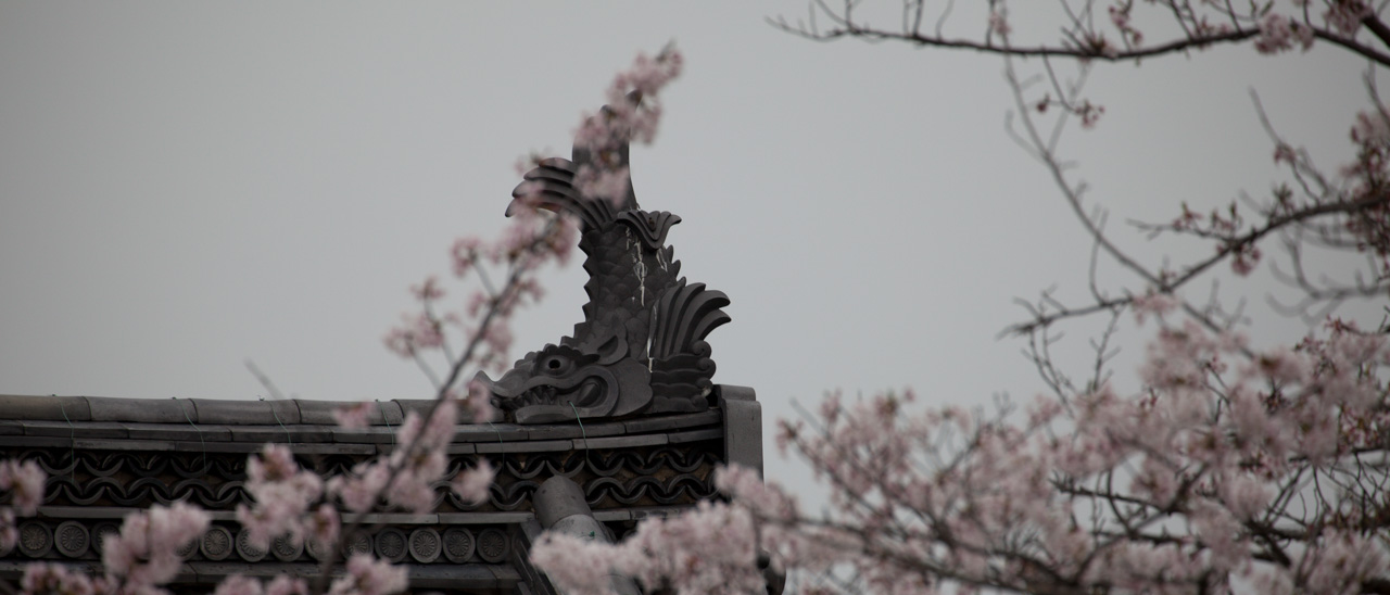 japon-odawara-shachihoko