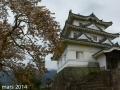 sakura_uwajima30032014-p1000974