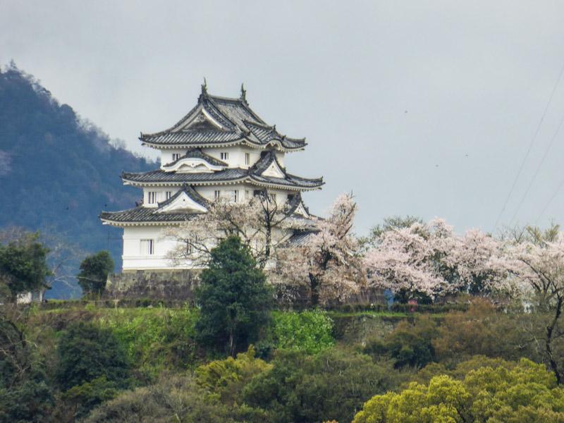 Le château de Uwajima