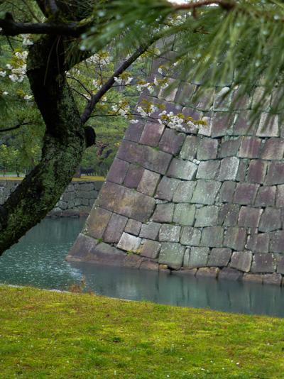 Chateaux_Japon_kirikomihagi__Nijo_Kyoto