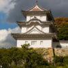 Chateau de Bitchu Matsuyama
