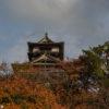 Photos du château de Maruoka