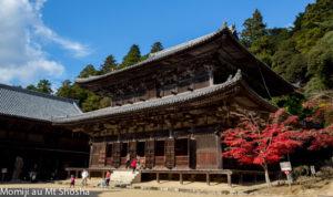 article14_tete_Japon--momiji--Mt-Shosha