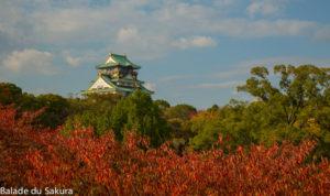 article15_bds--Japon--osaka-6