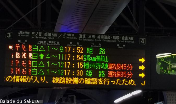 article15_bds--Japon--osaka-9
