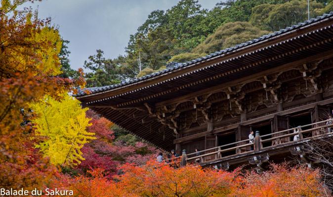 article16_bds--days_off2--Japon