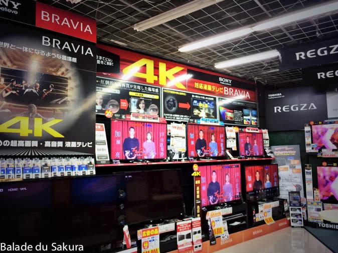 article19_bds--Japon--refuel-5