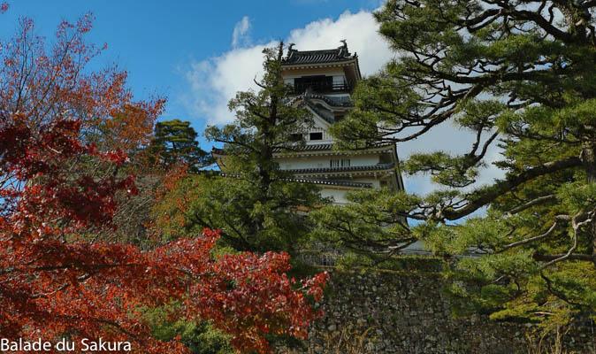 article21_bds--Japon--jour2--kochi