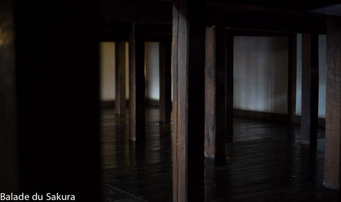 article2_bds--Japon--Matsumoto-2
